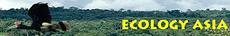 eco-asia-logo