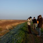Birdwatching in the marshes. We saw redshank, reed bunting and little egrets.