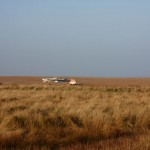 The Cley marshes are home to bittern, avocet, spotted redshank, marsh harrier, woodcock, huge numbers of waterfowl, waders and Brent geese.