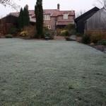 A frosty -1°C